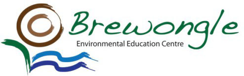 brewongle-logo1.jpg