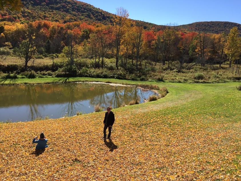 pond in fall.jpg