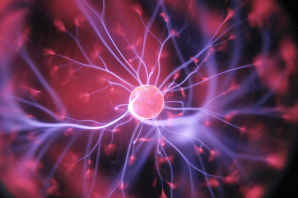 Neuroscience & Consciousness