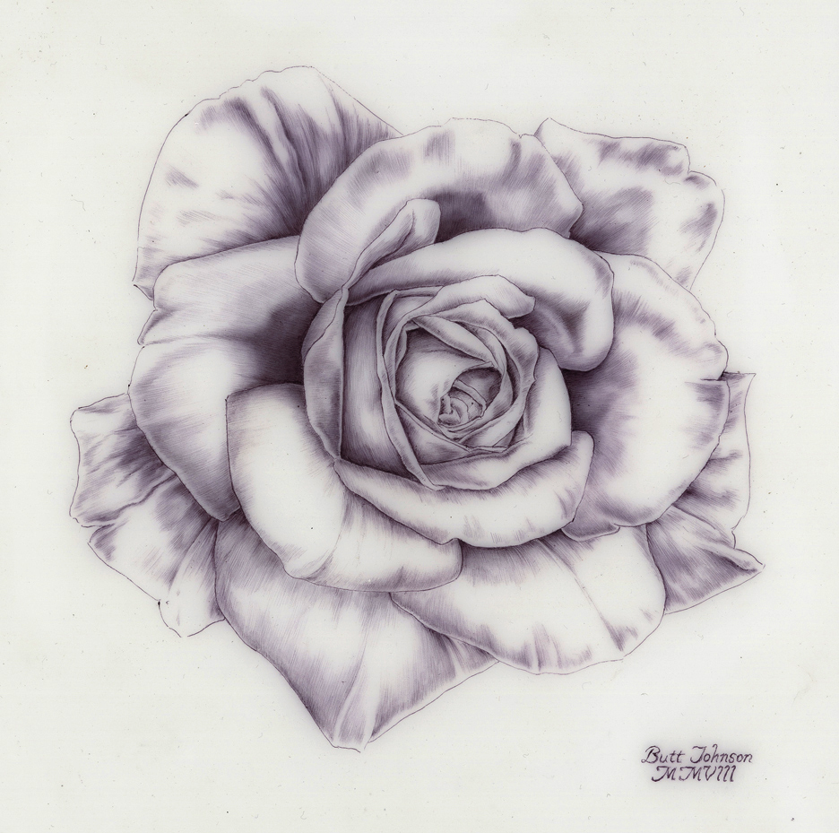 Untitled (Rose I)