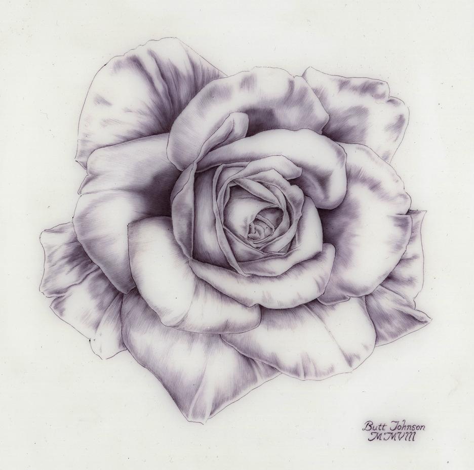 Untitled (Rose I)