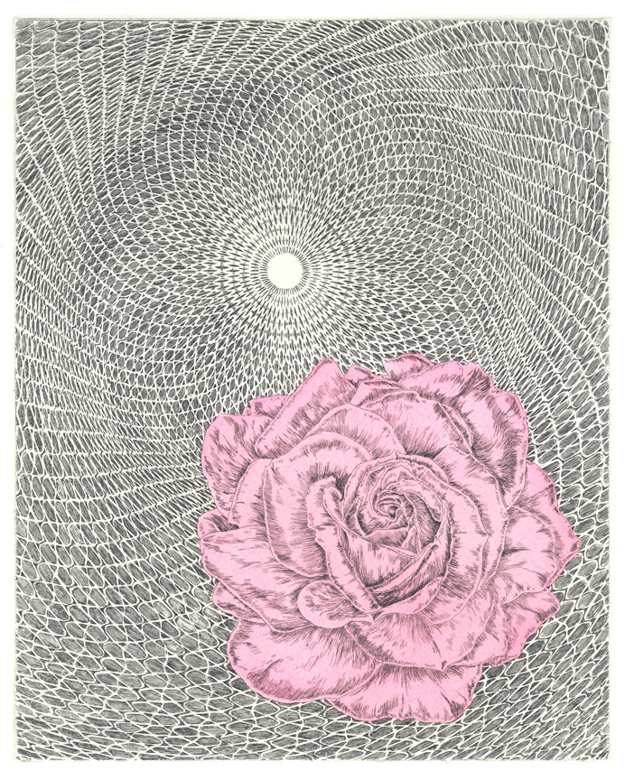 Untitled (Rose/Cycloid)