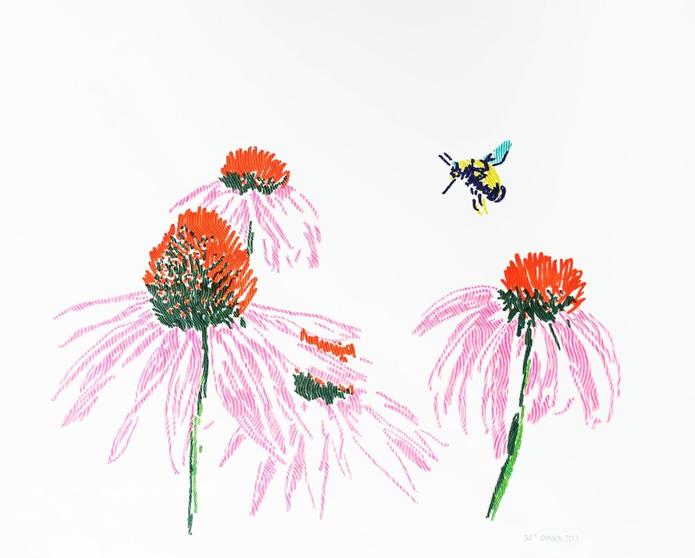 Untitled (Coneflowers and Bumblebee)