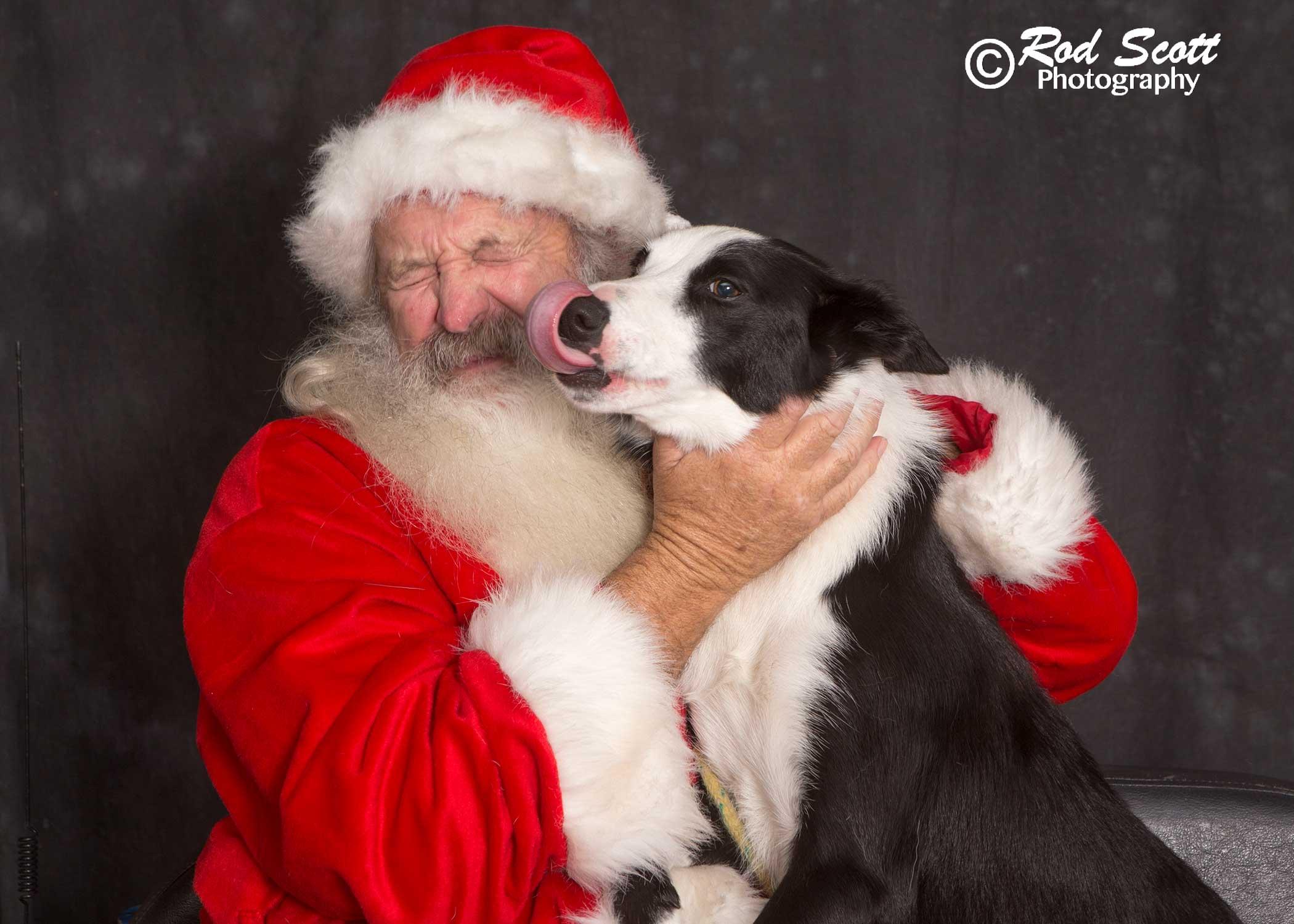 Kodak meets Santa