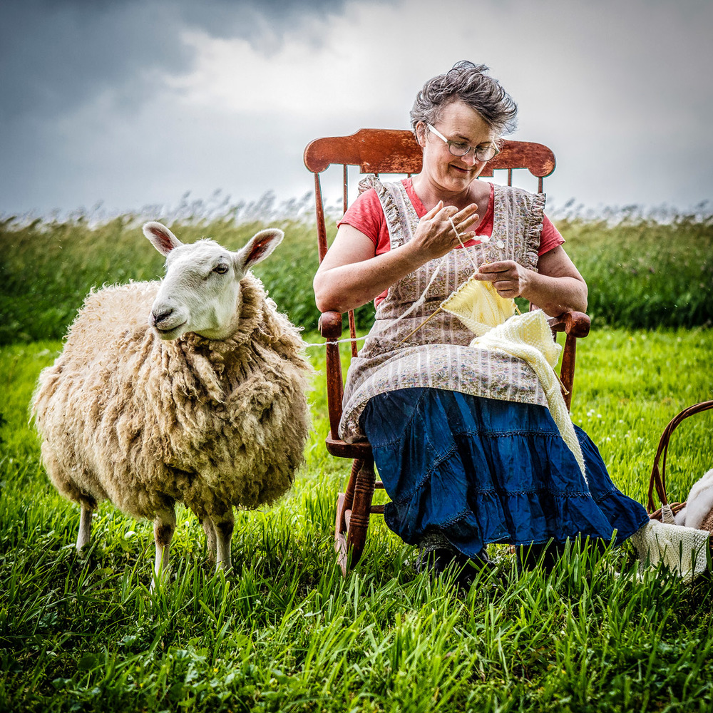 Woman-Knitting-from-a-Sheep-6225apf-.jpg