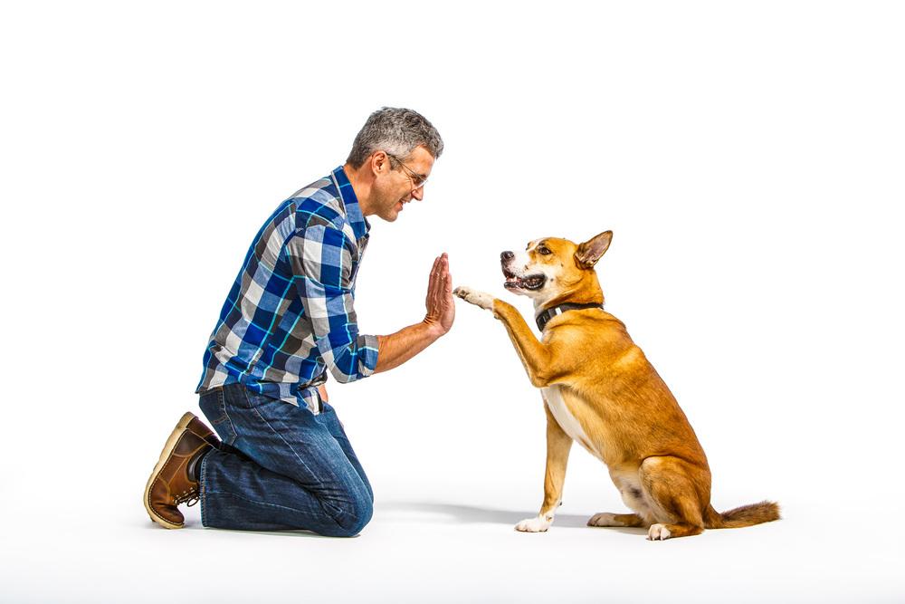 Man-and-Mixed-Breed-Dog-Ronan-Voyce-2367-apf.jpg