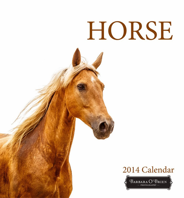 Find Horse on White Calendar Here