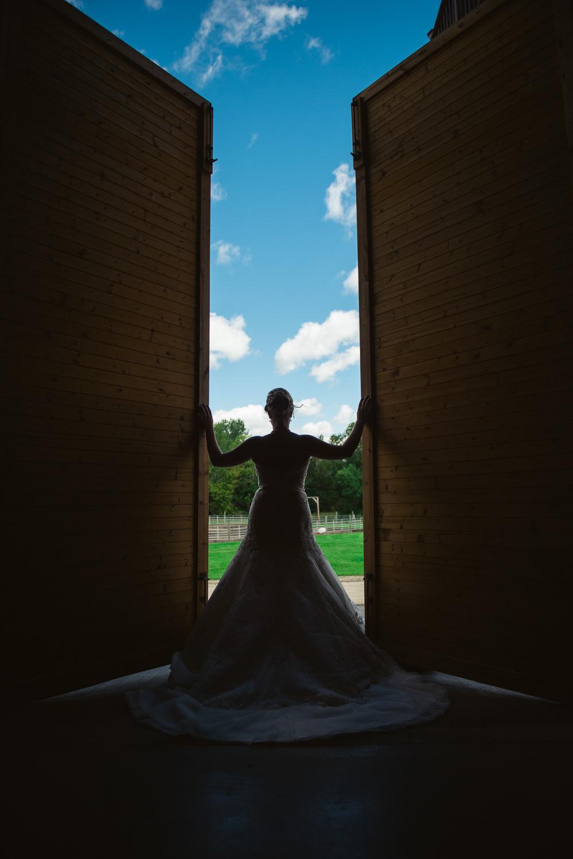 RKH Images - Best of 2016 - Minnesota Wedding Photographer -8.jpg