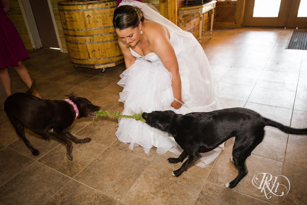 Katie & Alan - Minnesota Wedding Photography - Next Chapter Winery - RKH Images - Blog  (16 of 48).jpg