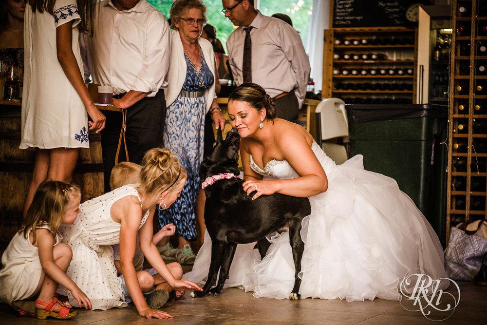Katie & Alan - Minnesota Wedding Photography - Next Chapter Winery - RKH Images - Blog  (34 of 48).jpg
