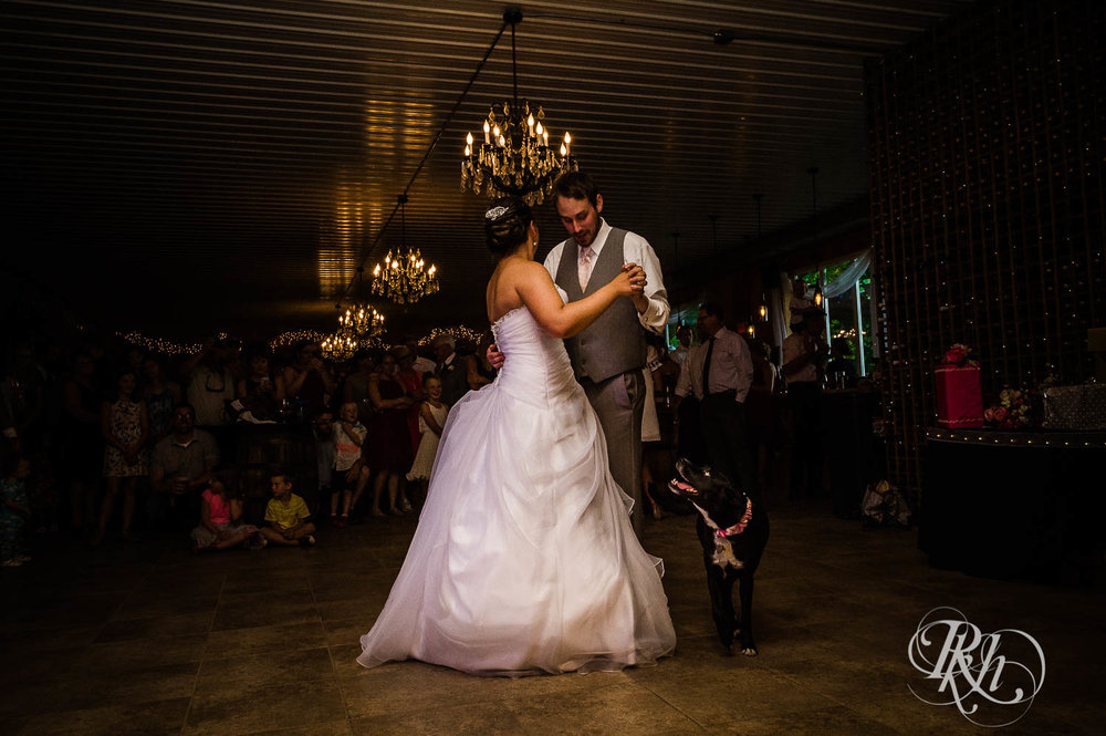 Katie & Alan - Minnesota Wedding Photography - Next Chapter Winery - RKH Images - Blog  (38 of 48).jpg