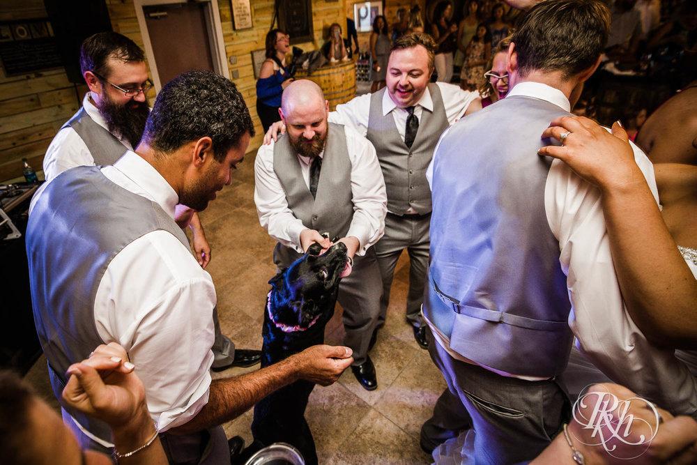 Katie & Alan - Minnesota Wedding Photography - Next Chapter Winery - RKH Images - Blog  (42 of 48).jpg