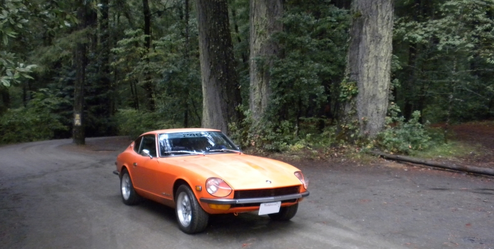 Datsun 240z in the trees.jpg