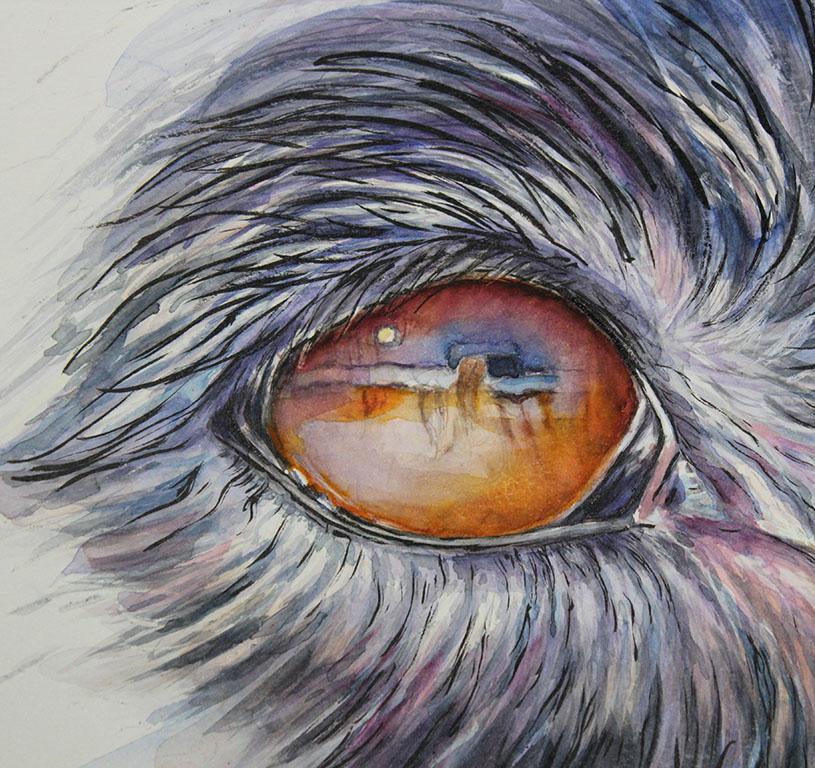 molly eye