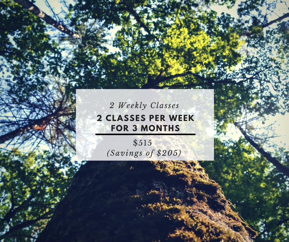 2 Classes.png