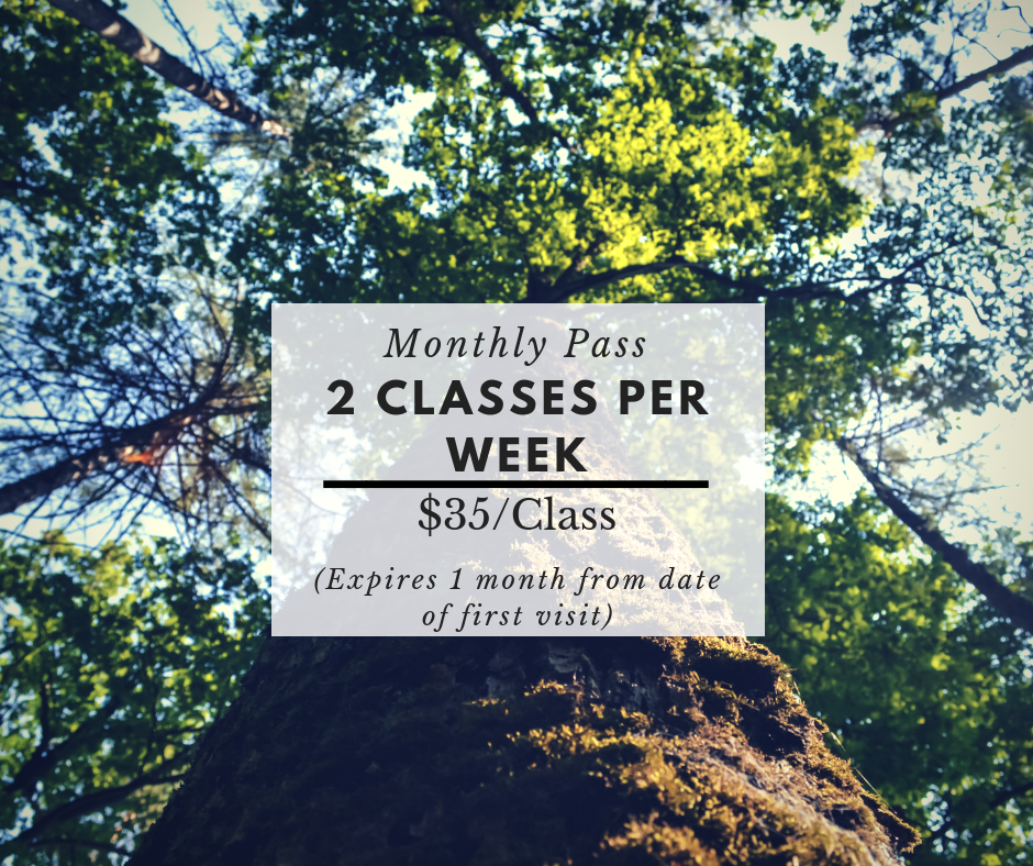 $280 -  The monthly pass is for those who are serious about making the process of transformation as streamlined as possible.    ** Includes:   Access to videos of exercises/1- 20min strategy phone call.