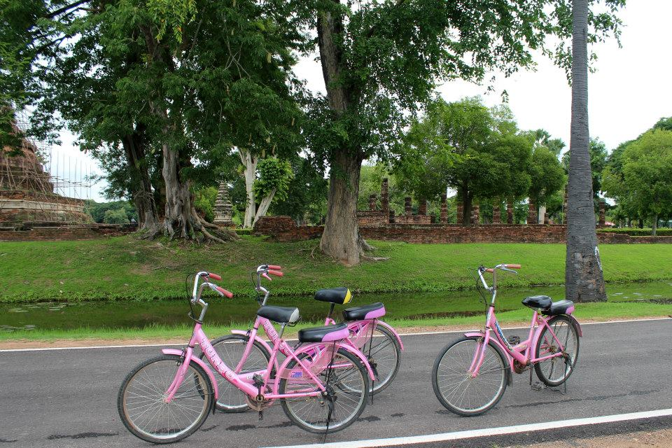 Tip: rent bikes if you visit Sukhothai Historical Park, Thailand.