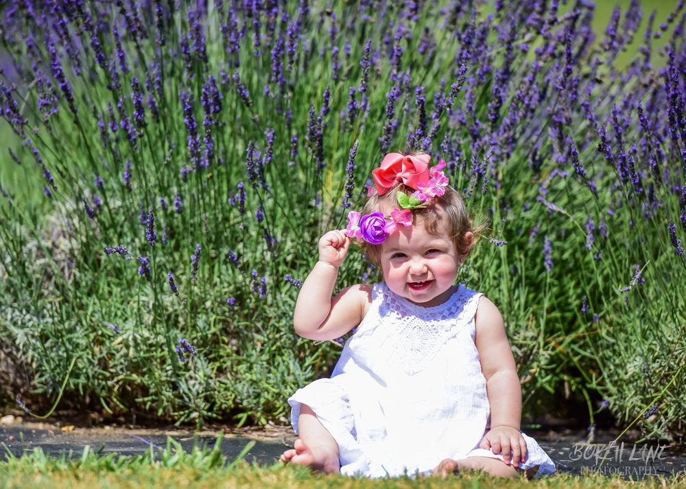 LavenderandHerb-14.jpg