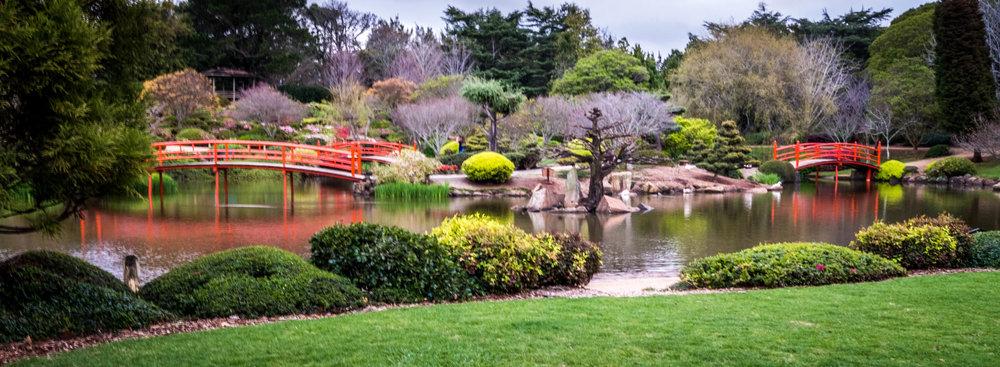 Toowoomba Japanese Gardens Photography Tour