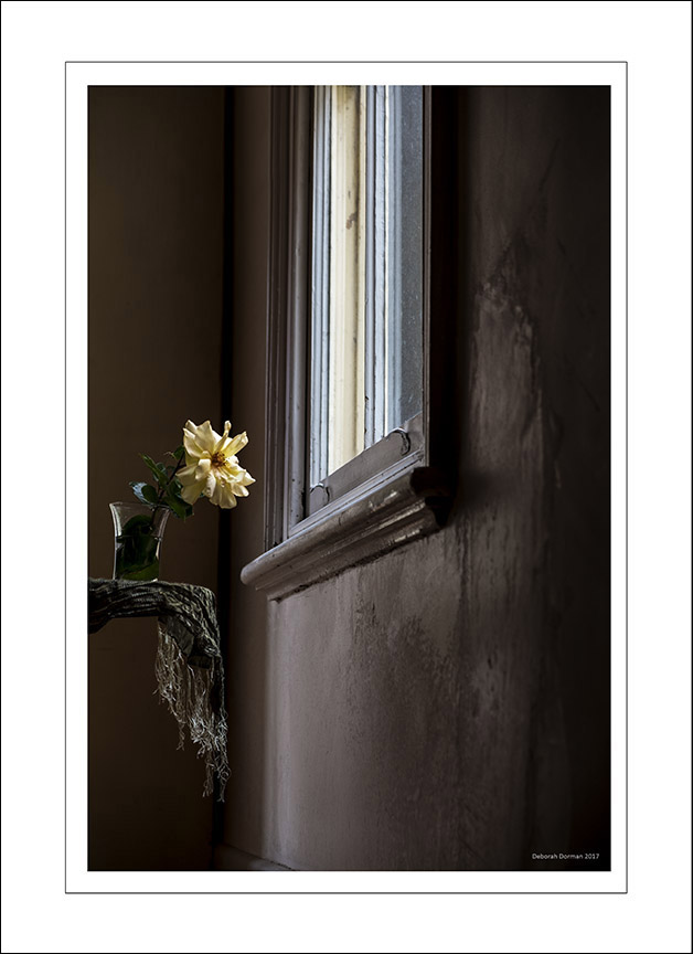 Still Life Scarf & Flowers 2.jpg