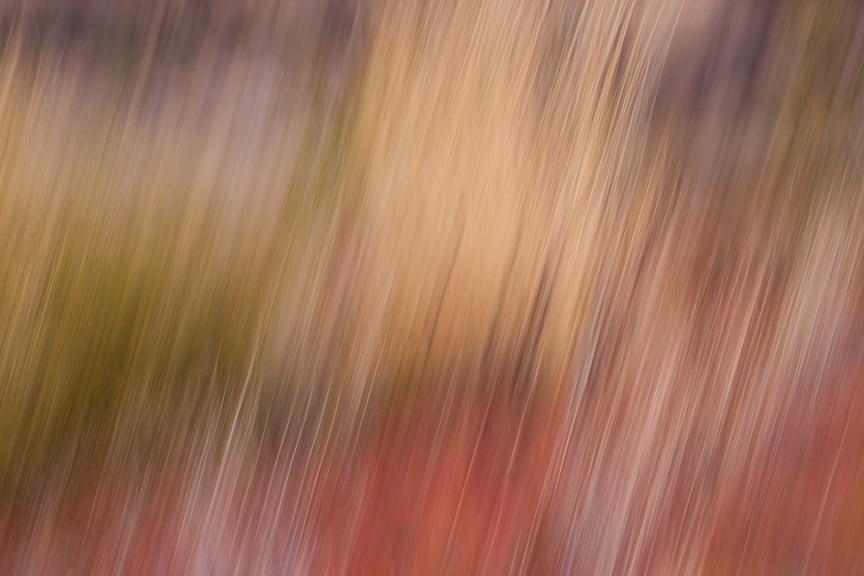 Uluru-9709.jpg