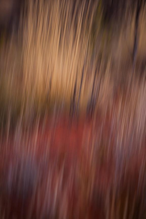 Uluru-9717.jpg