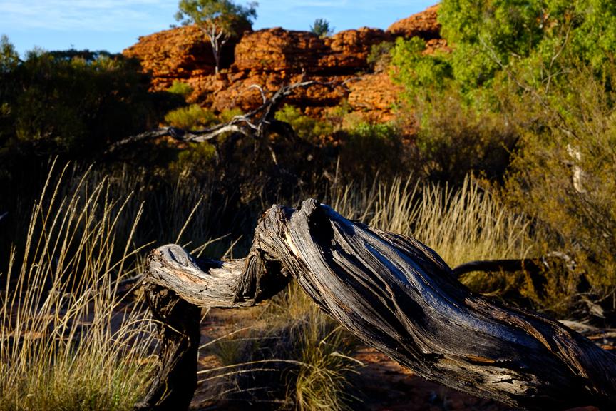 Uluru-7275.jpg