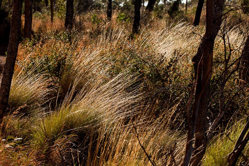 Uluru-9860.jpg