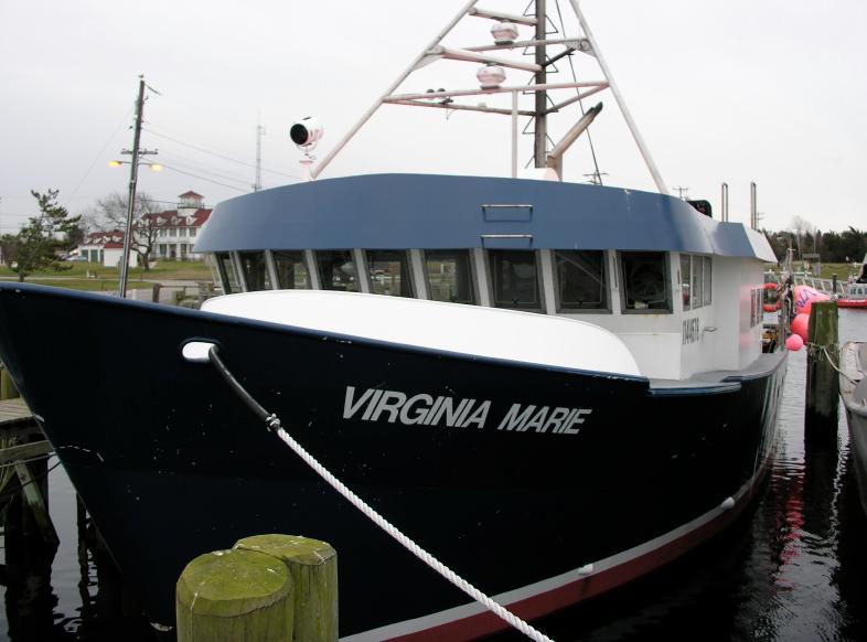 Virginia Marie.png
