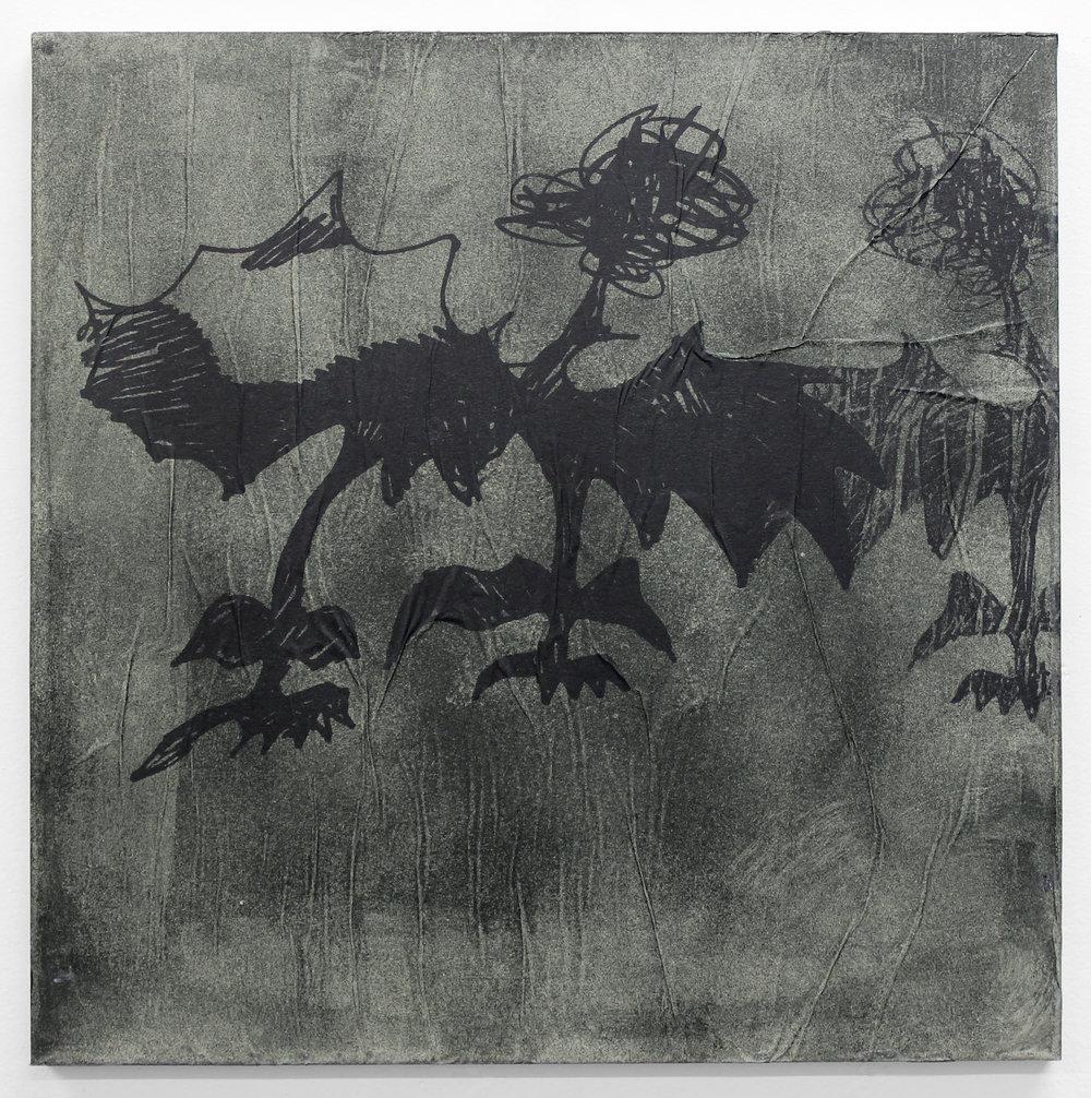 Origin of White Wing Devil