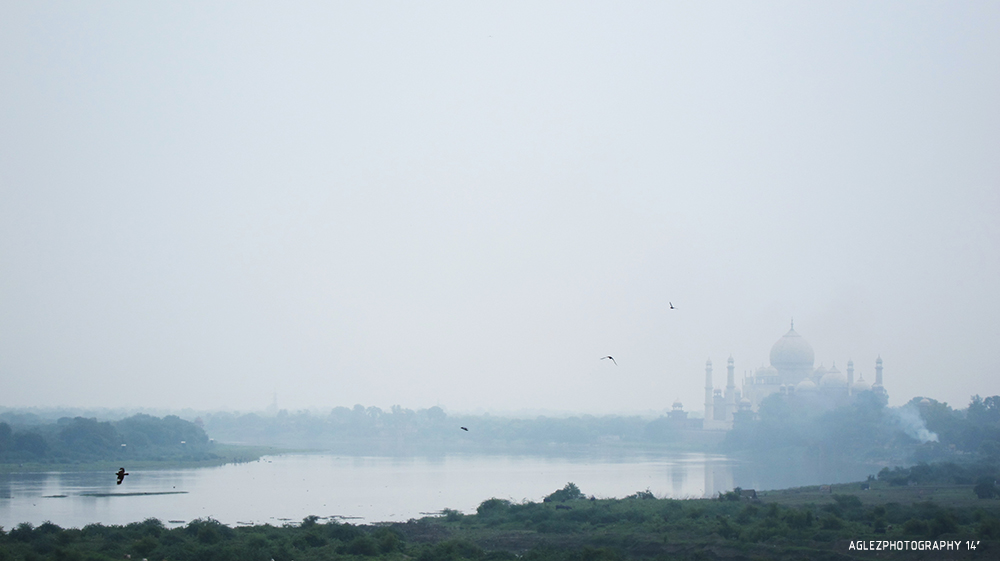 INDIA 7.jpg