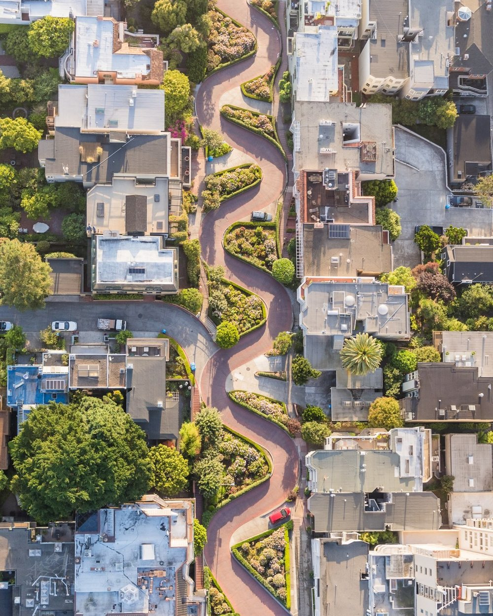 Lombard street, San Francisco / by Toby Harriman