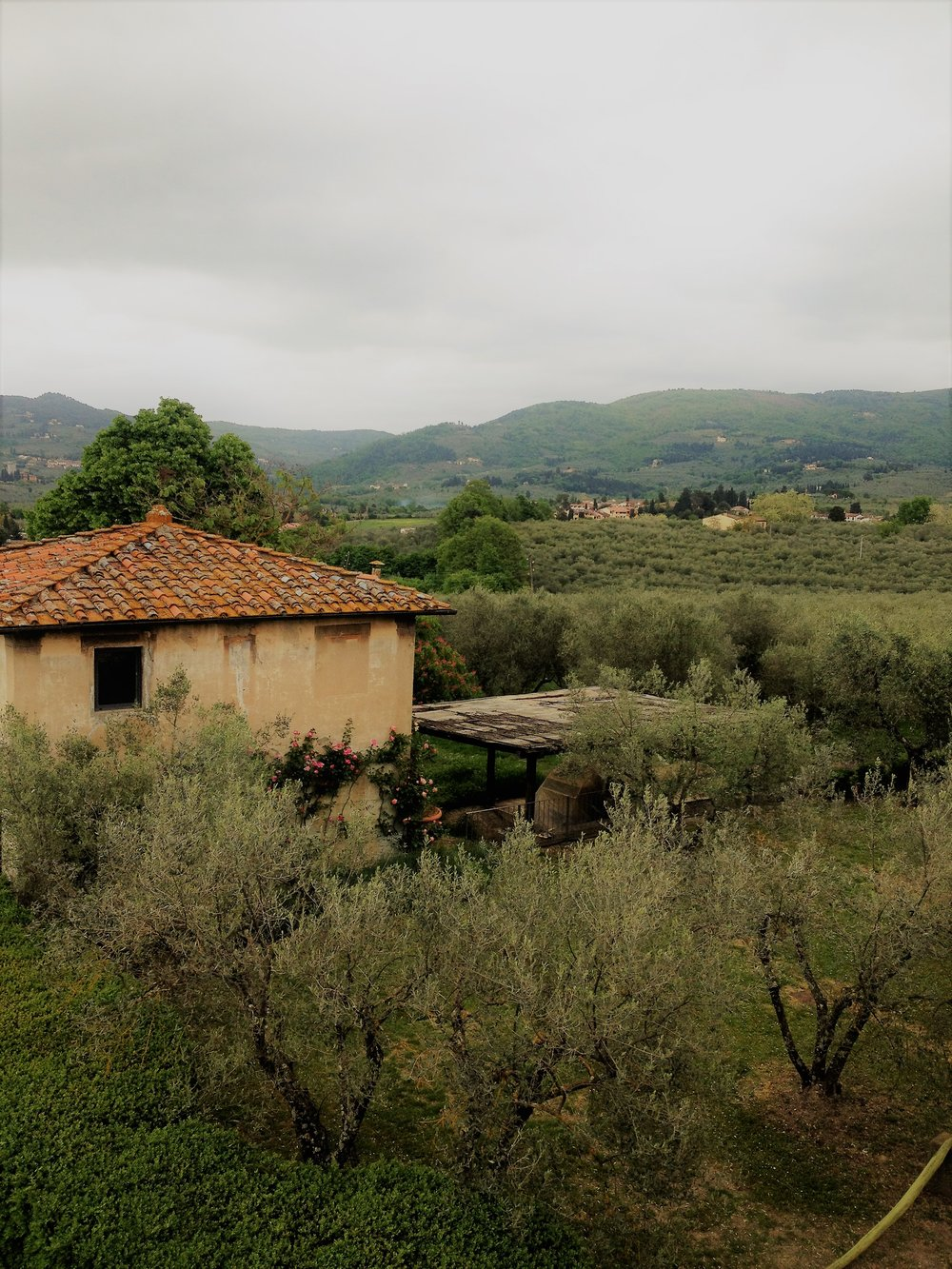 Overlooking the Tuscan countryside.jpg
