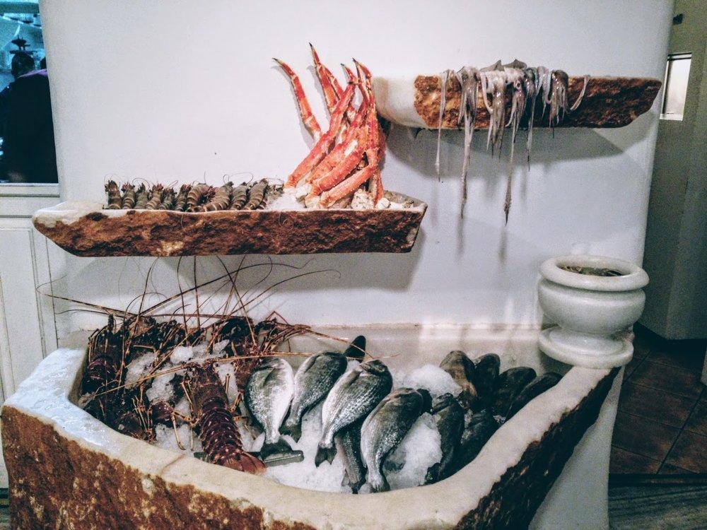 Fresh seafood and gourmet cuisine at Barbarossa restaurant