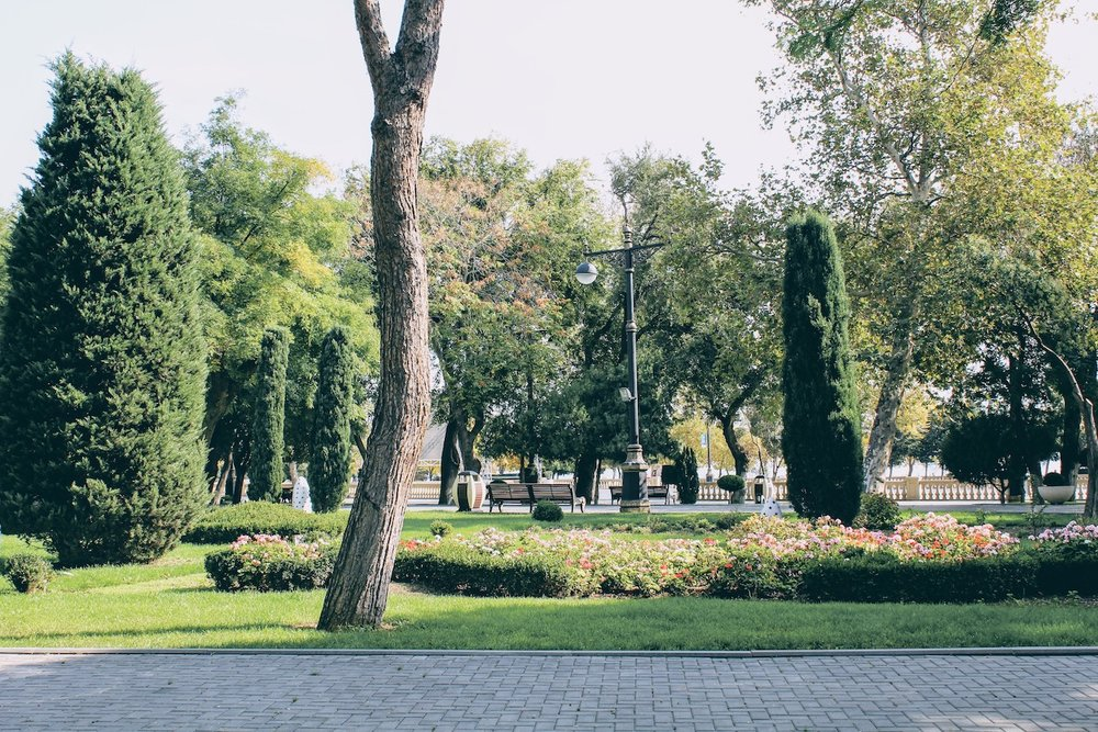 Green Gardens along the Baku Boulevard.