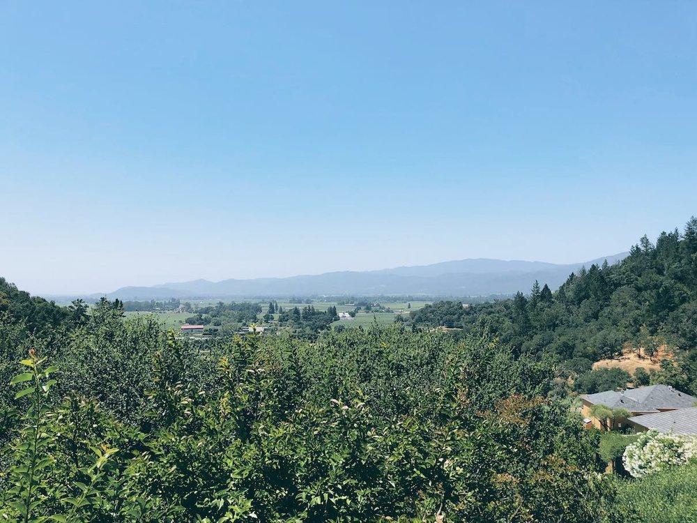 Auberge du Soleil, Napa Valley