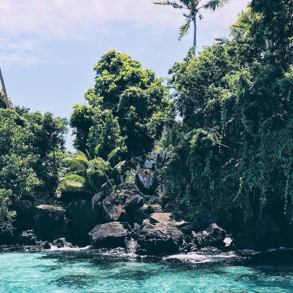 Taveuni 1 - Marie Nieves.jpeg