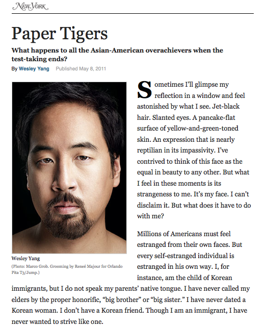Paper Tigers Screen shot 2013-10-29 at 3.37.11 PM.png