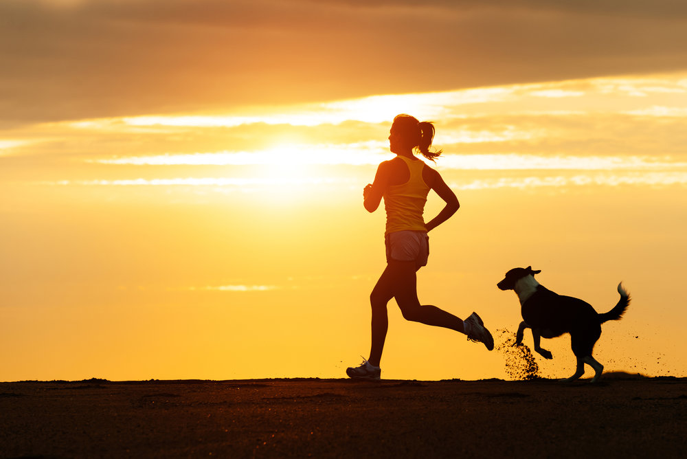 Woman running on beach with a dog (Dreamstime).jpg