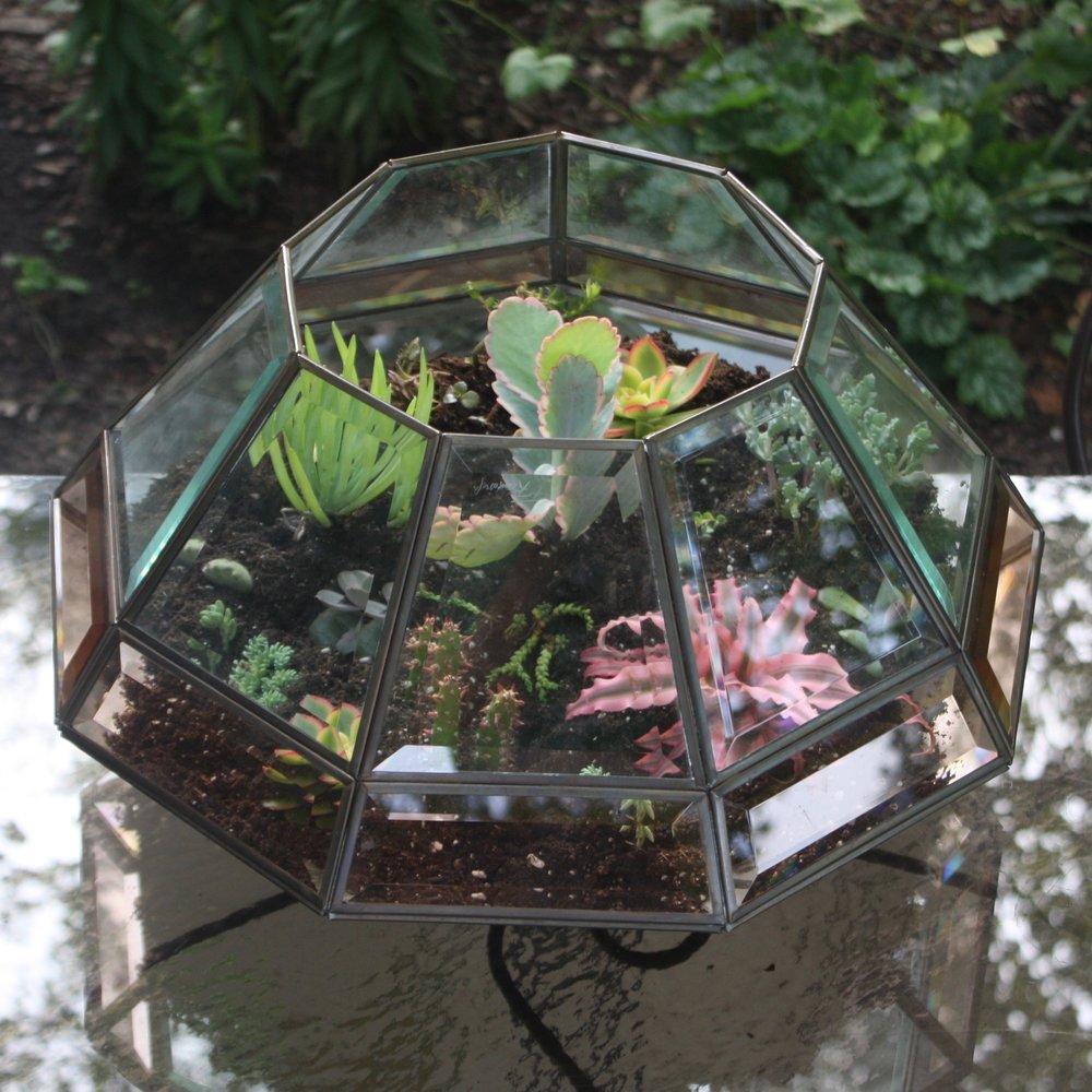 Broken Light Fixture turned Cactus Garden