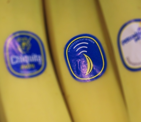 Chiquita banana sticker design contest