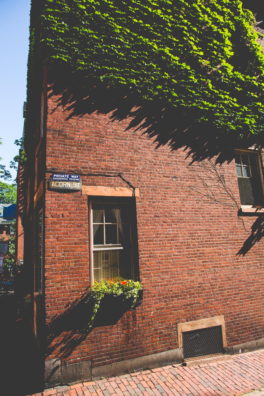Historic Beacon Hill. Photos by Daniela Dawson.