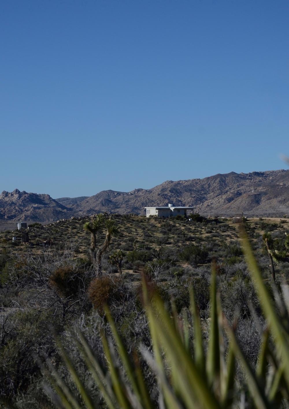 Los-Vientos-Hideaway-Long View Tall.jpg