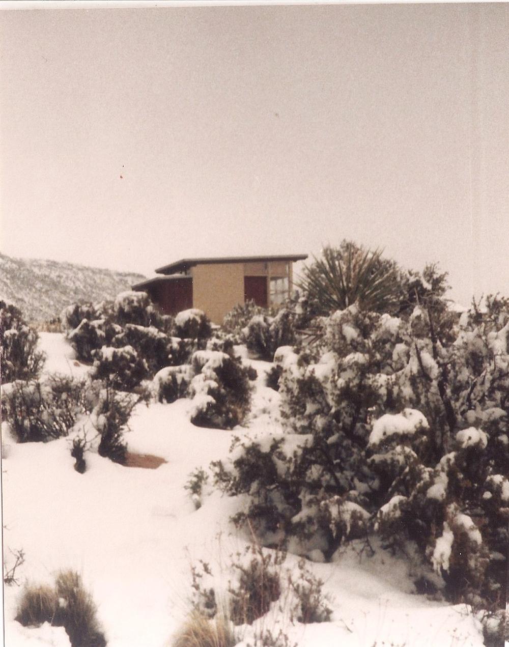 036-snow.jpg