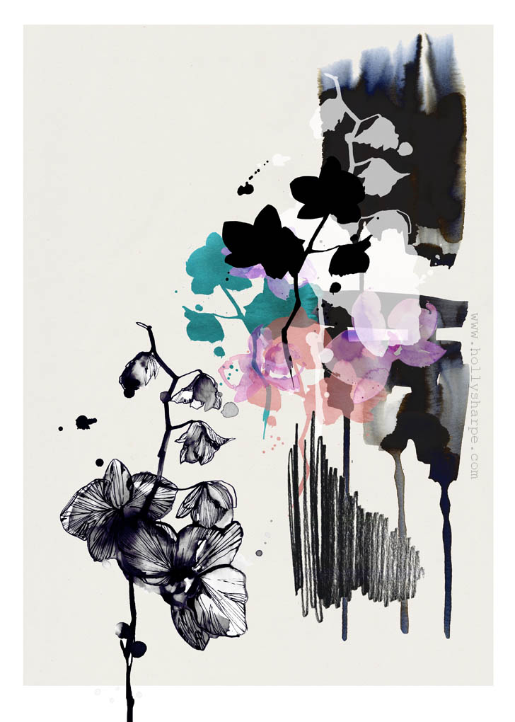 Inky Orchid /  illustration by Holly Sharpe