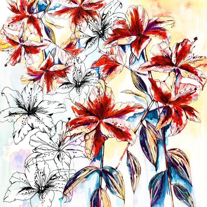 Rainbow Lily