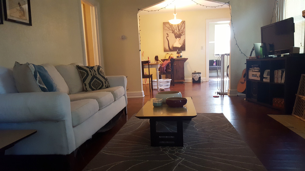Melissa Living room.jpg