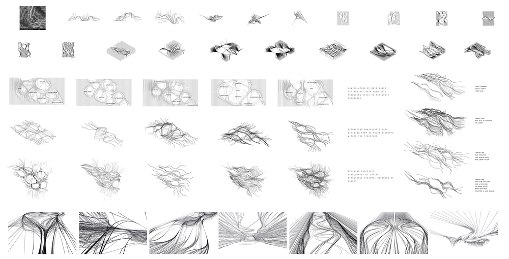 D5 Research copy1.jpg