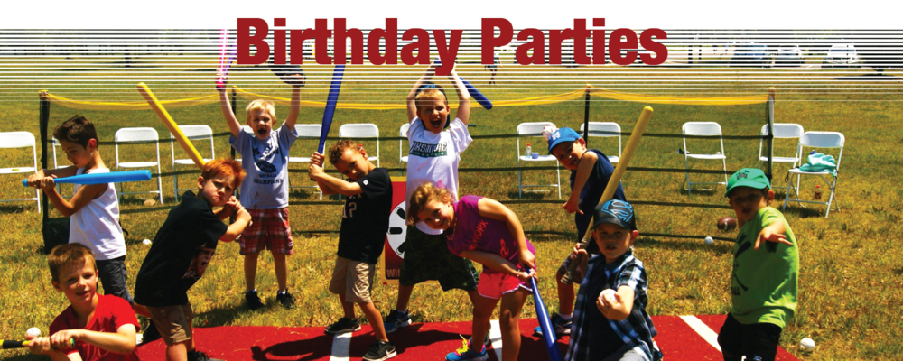 These make GREAT parties for a ballplayer of any age! Not only do we set up the fields, but also keep participants of all ages organized, included and entertained. Parents are free to jump in and play, or sit back, relax and watch!