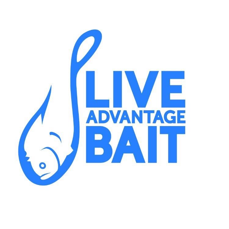 Live Advantage Bait